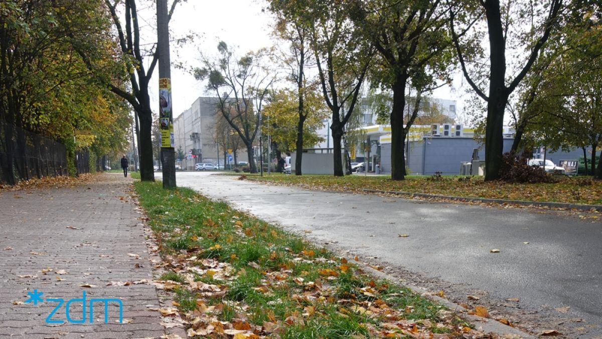 Więcej zieleni na ul. Chociszewskiego