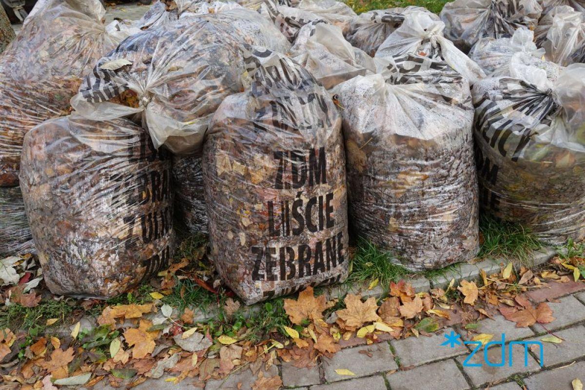 Przypominamy o akcji odbierania liści