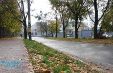 Odnowimy pas zieleni na ul. Chociszewskiego