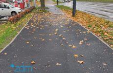 Chodnik po remoncie (chwilę przed sprzątnięciem liści)