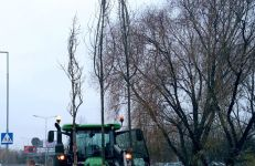 Sadzimy drzewa na ul. Milczańskiej