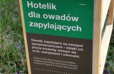 Hotelik dla owadów na terenie ZDM