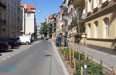 Ulica Małeckiego na Łazarzu