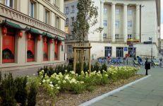 Zieleń i mała architektura przy ul. Lewandowskiej
