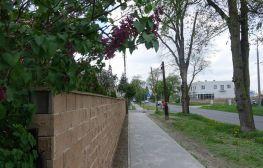 Nowy chodnik na ulicy Michałowo