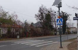 Umultowska z aktywnym przejściem dla pieszych