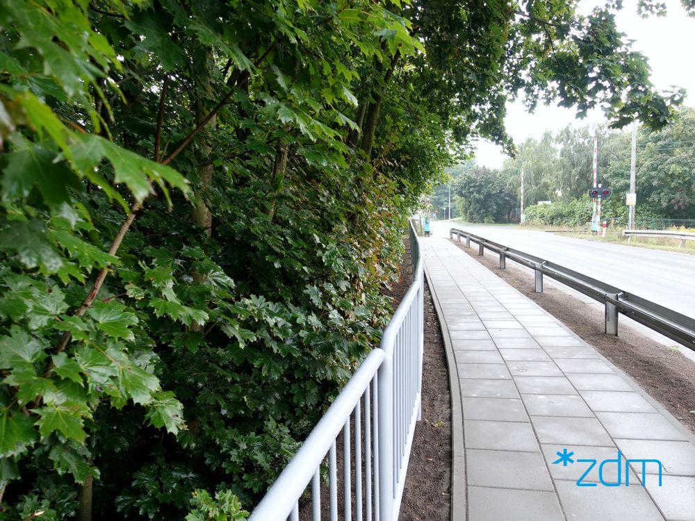 Po prawej stronie zielone krzewy, na prawo nowy chodnik i bariery oddzielające od jezdni