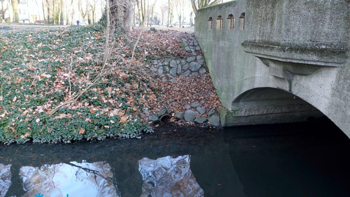 Czystsza woda w Bogdance dzięki inwestycji ZDM