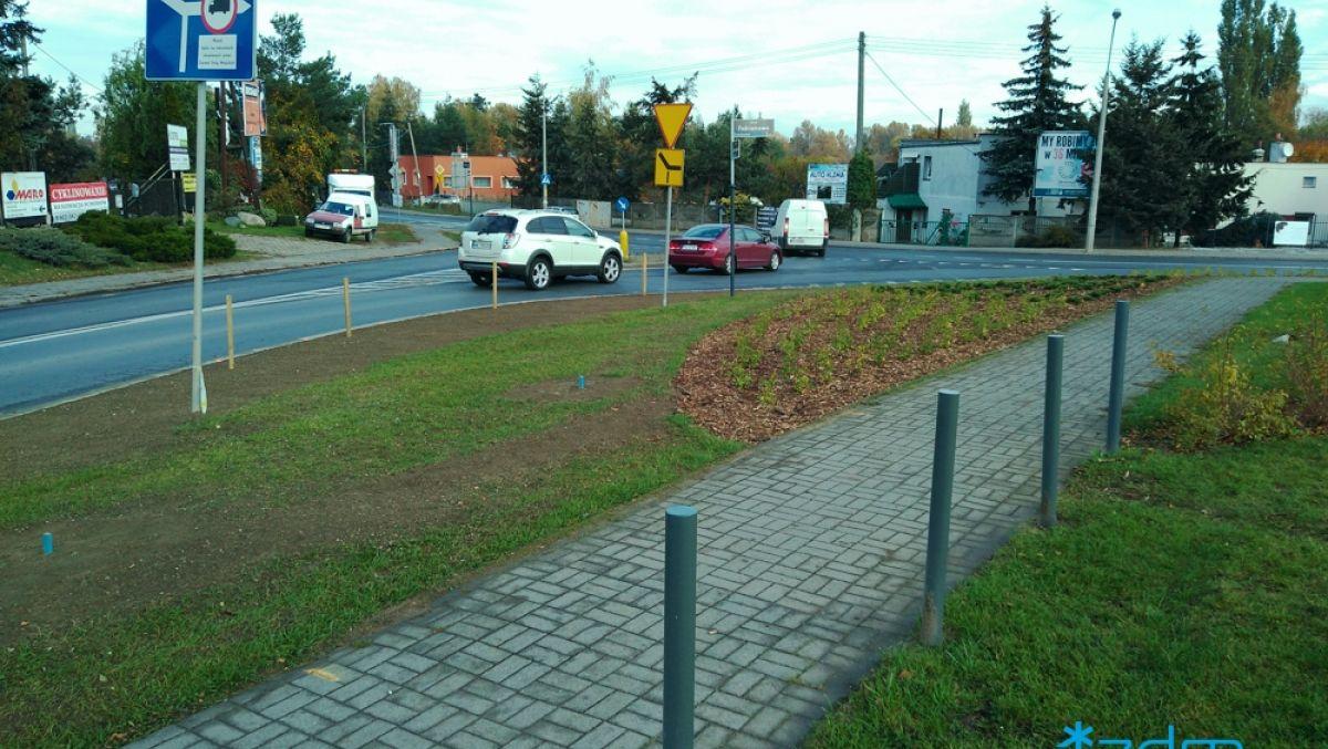 Krzewy i drzewa ozdobne przy zbiegu ul. Fabianowo i Sycowskiej
