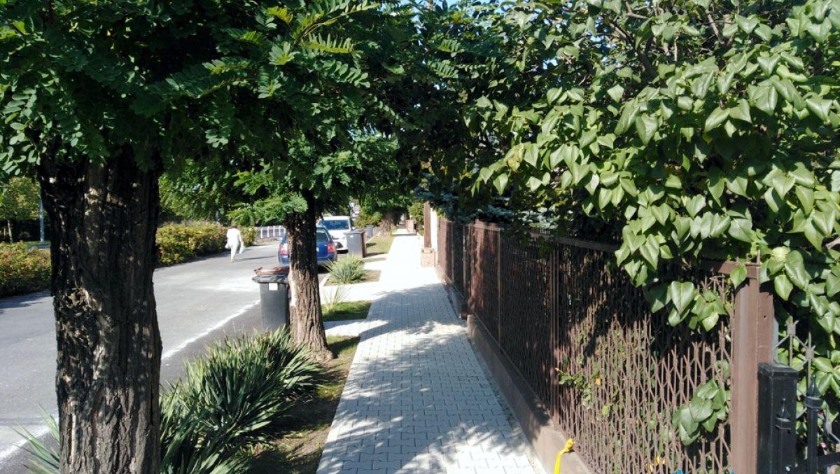Chodnik i zieleń na ul. Bohaterów Westerplatte